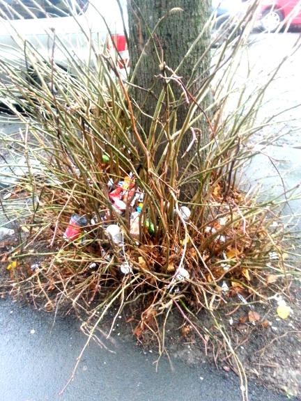 magic-rubbish-tree-of-riverside