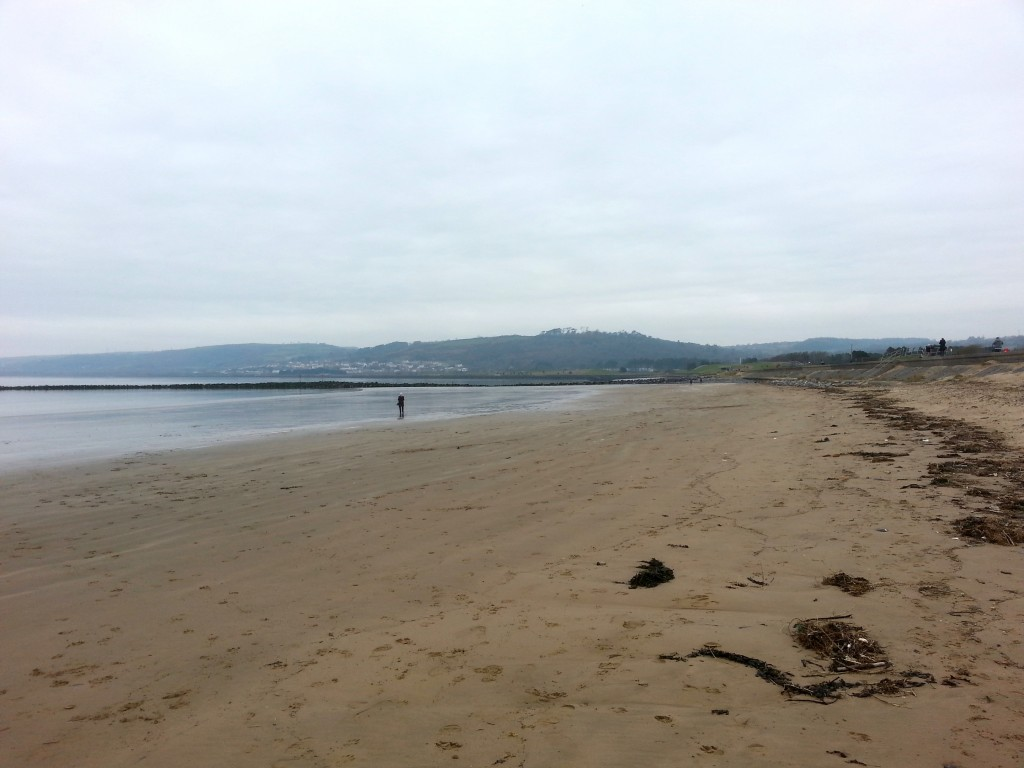 Llanelli Beach - Stradey Woods in the background